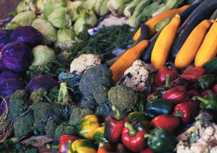 Nutrition Planning - (Photography: Alexandr Podvainy)